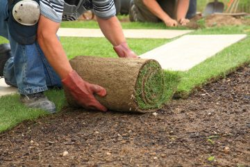Sod Installation
